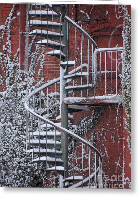 Spiral Staircase With Snow And Cooper's Hawk Greeting Card