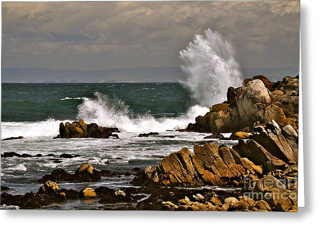 Splash Greeting Card by Johanne Peale