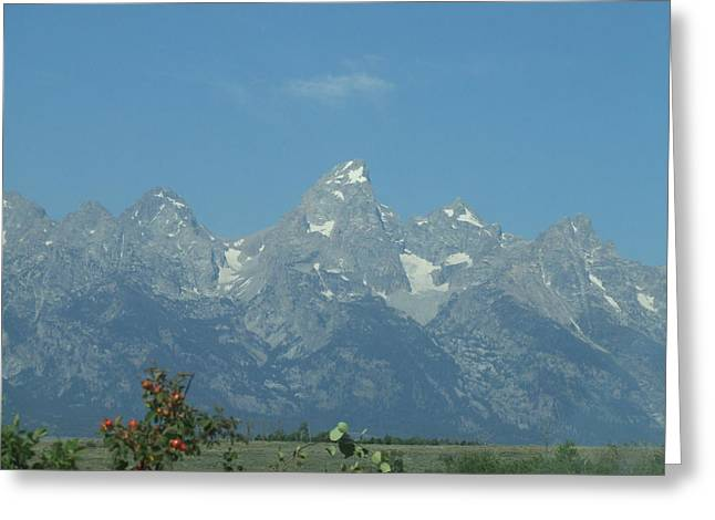 Splendour Of The Grand Tetons Greeting Card