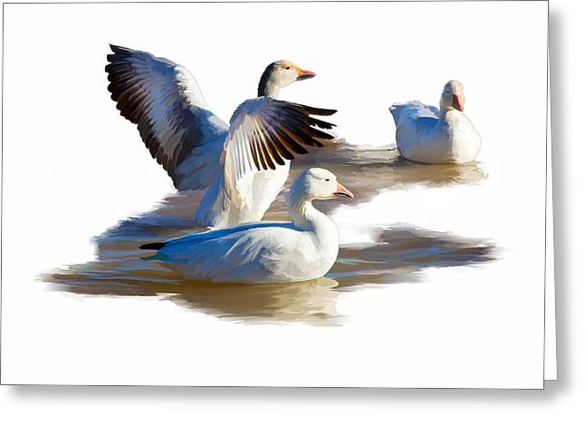 Spreading Your Wings Greeting Card