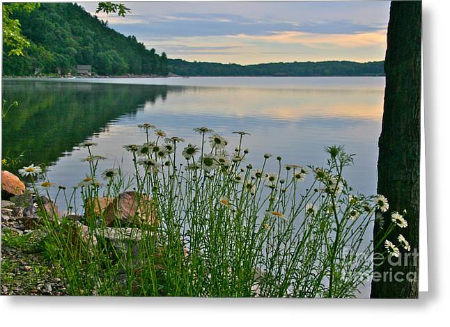 Spring At The Lake Greeting Card by Joan McArthur