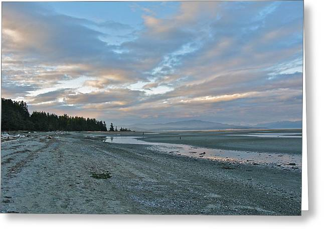 Greeting Card featuring the photograph Spring Beach by Brian Sereda