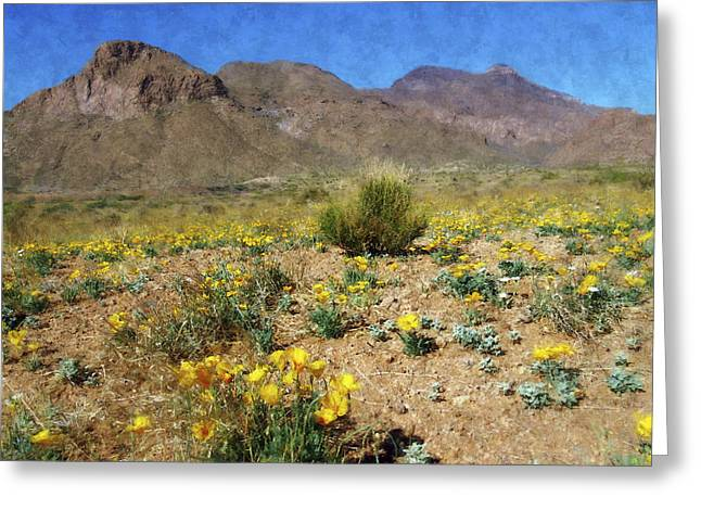 Spring Bloom Franklin Mountains Greeting Card by Kurt Van Wagner