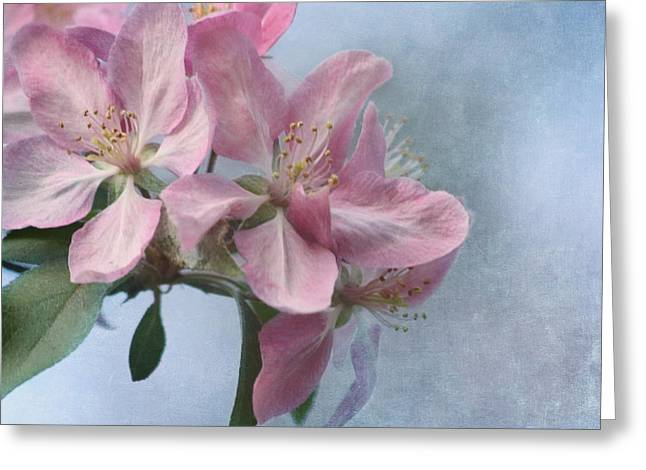 Spring Blossoms For The Cure Greeting Card
