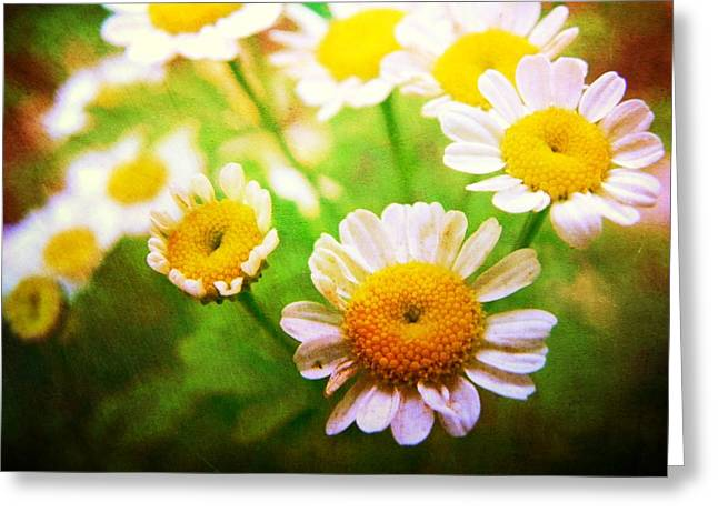 Spring Bouquets Greeting Card