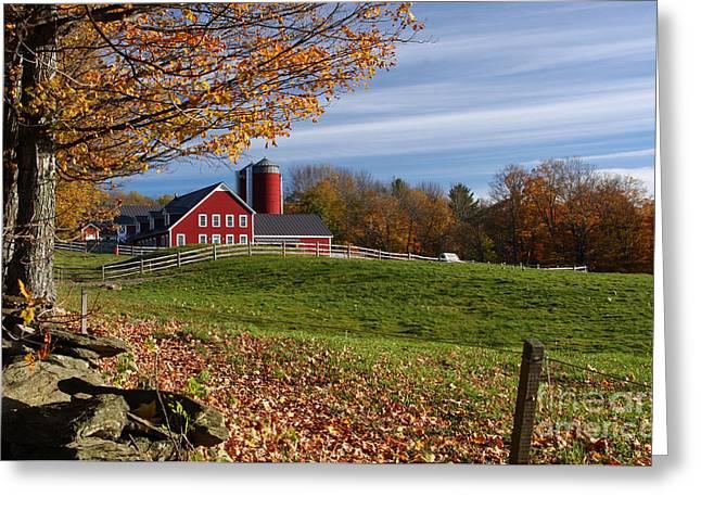 Spring Brook Farm Greeting Card by Butch Lombardi