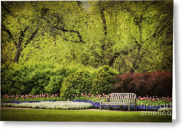 Spring Garden Greeting Card by Cheryl Davis