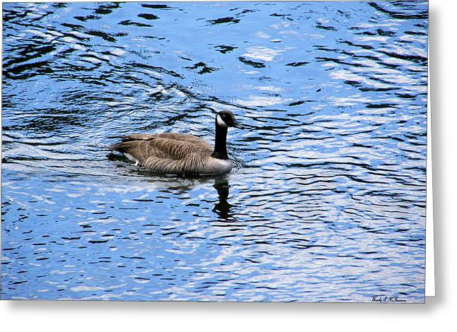 Spring Goose Greeting Card