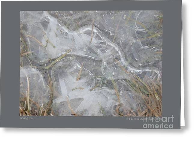 Spring Ice-i Greeting Card by Patricia Overmoyer