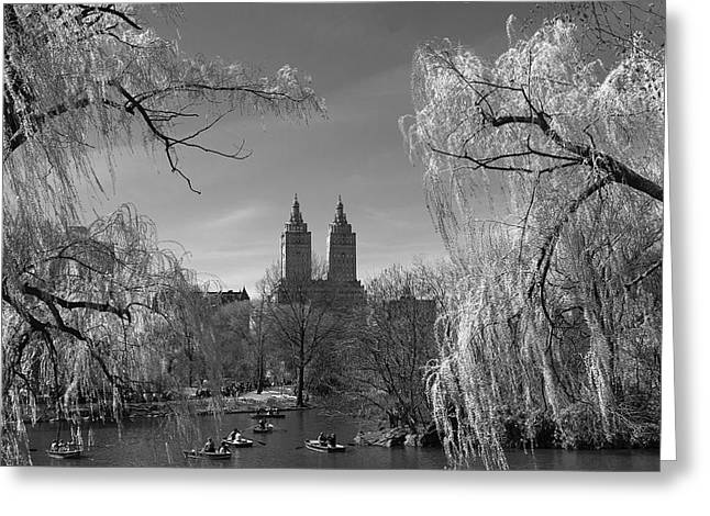 Spring In Central Park Greeting Card