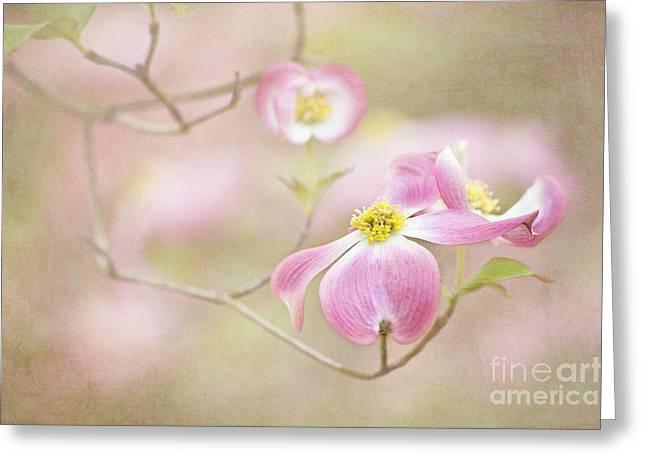 Spring Inspiration Greeting Card by Cheryl Davis