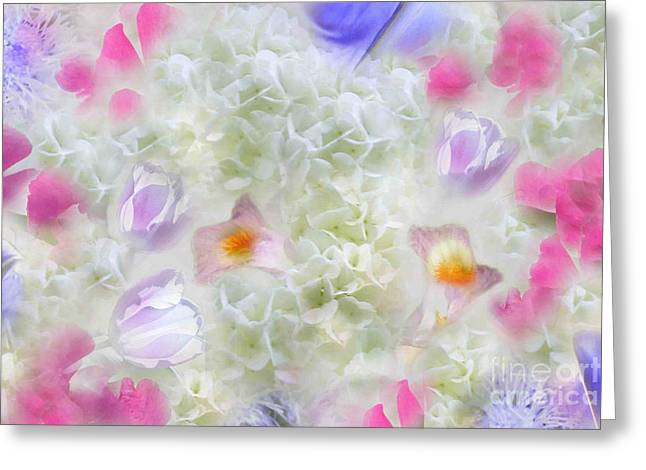Spring Is In The Air Greeting Card by Cindy Lee Longhini