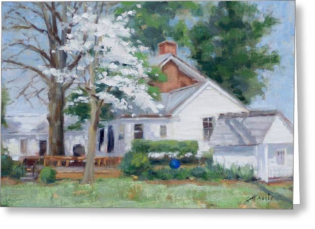 Spring On Windy Hill Greeting Card by Sandra Harris