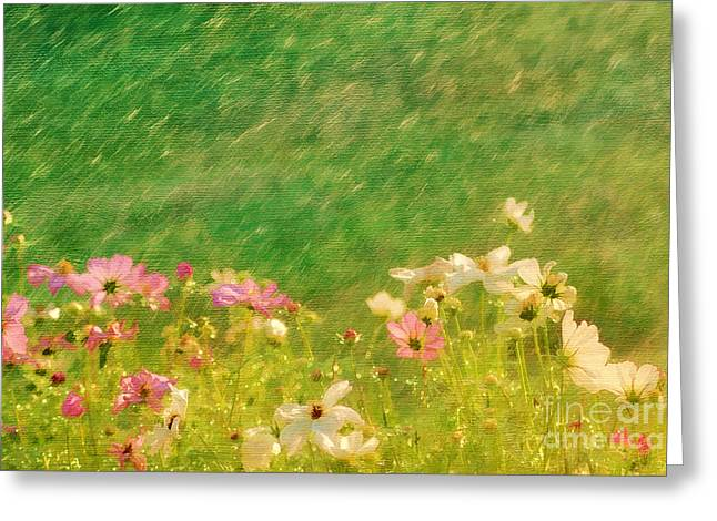 Spring Rain Greeting Card by Darren Fisher