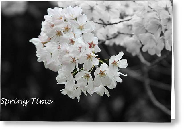 Spring Time Greeting Card by Gunz The Great
