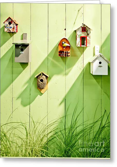 Greeting Card featuring the photograph Spring Wooden Wall by Ariadna De Raadt