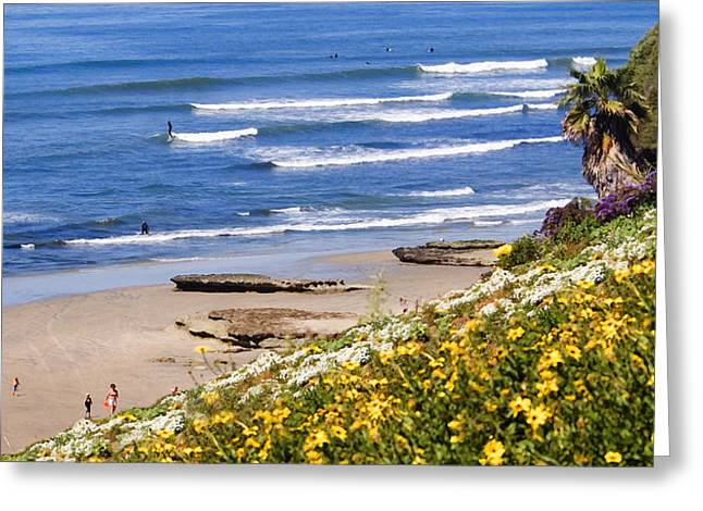 Springtime At Swamis Greeting Card by Ron Regalado