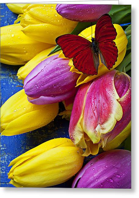 Springtime Tulips And Red Butterfly Greeting Card by Garry Gay