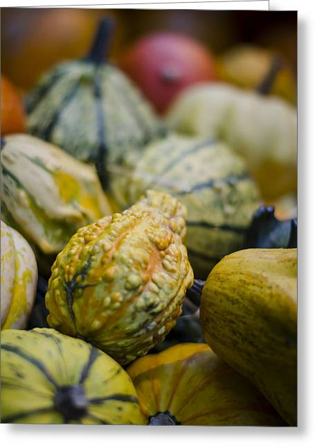 Squashes At The Market Greeting Card by Heather Applegate