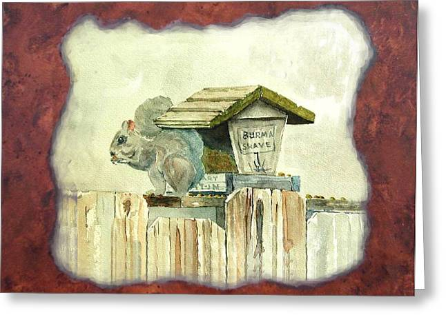 Squirel At Bird Feeder Greeting Card