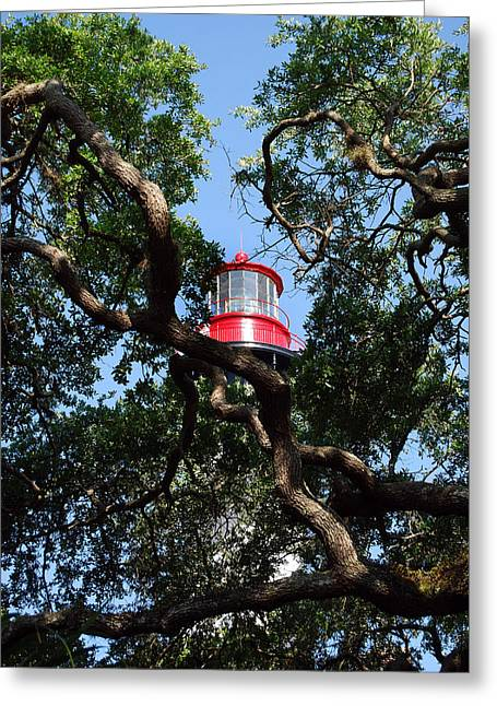St Augustine Tree House Greeting Card by Skip Willits