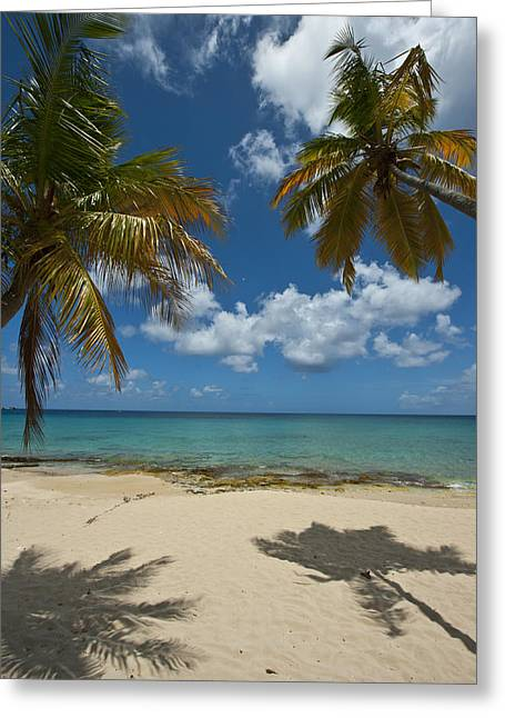 St Croix Afternoon Greeting Card