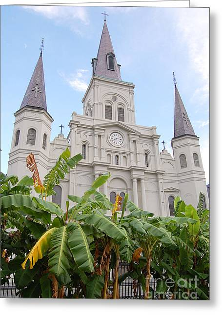 St Louis Cathedral Rising Above Palms Jackson Square French Quarter New Orleans Print  Greeting Card by Shawn O'Brien