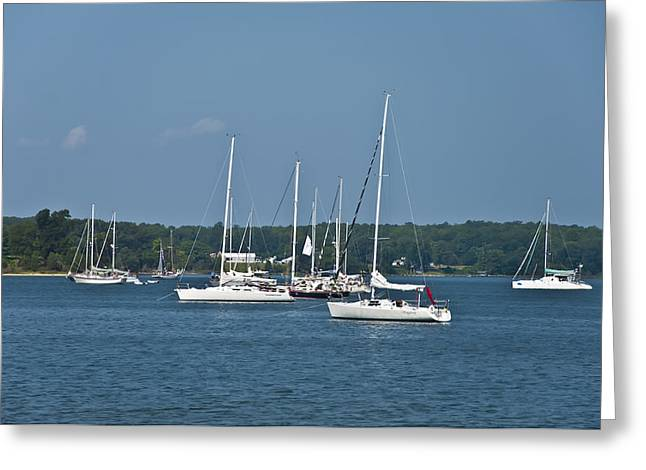 St. Mary's River Greeting Card by Bill Cannon