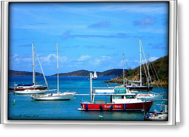Greeting Card featuring the photograph St-thomas Virgin Islands by Danielle  Parent