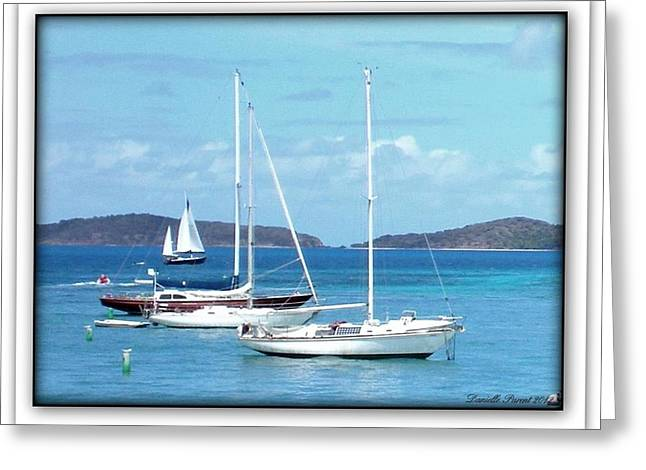 Greeting Card featuring the photograph St-thomas Virgin Islands Trio by Danielle  Parent