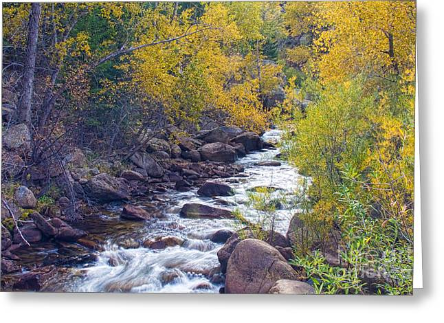 St Vrain Canyon And River Autumn Season Boulder County Colorado Greeting Card