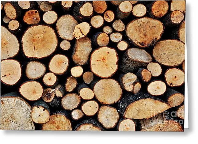 Stack Of Tree Logs Greeting Card by Sami Sarkis