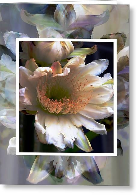 Stacked Floral Greeting Card by Regina Arnold