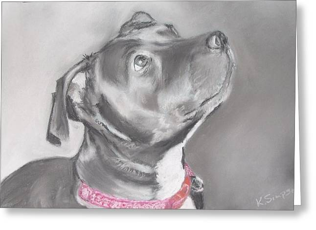 Staffordshire Terrier  Greeting Card by Karl Simpson