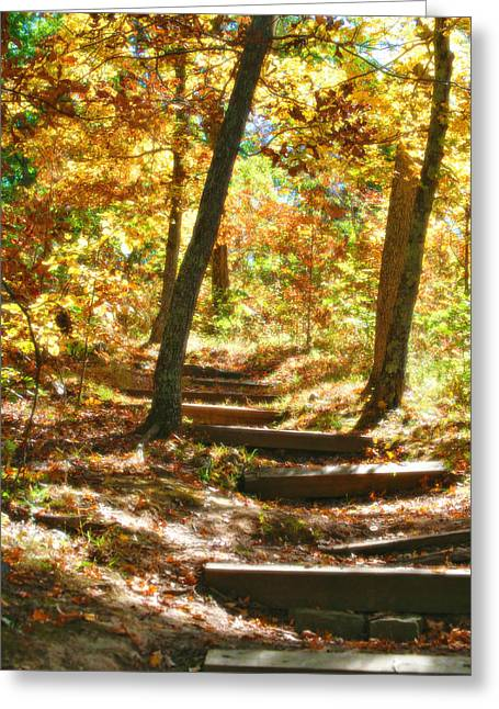Greeting Card featuring the photograph Stairway To Heaven by Peggy Franz