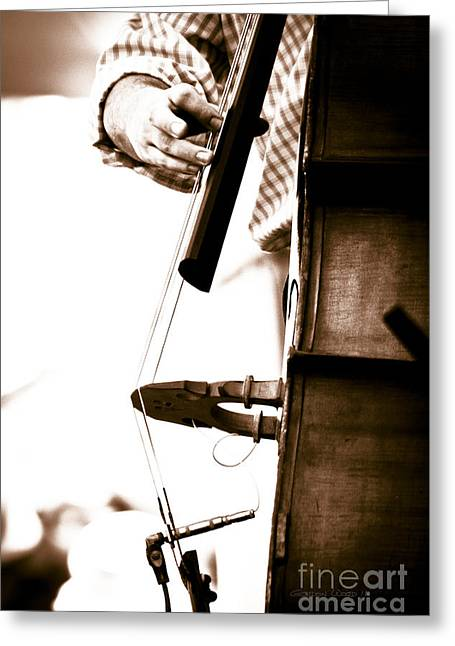 Stand Up Bass Player At Sunfest Greeting Card by Gordon Wood