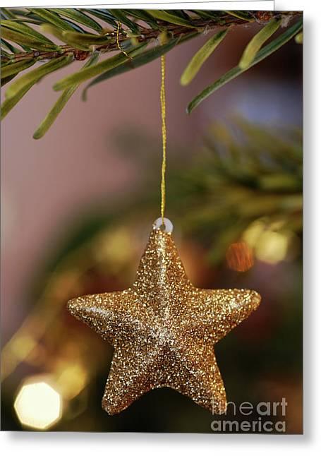 Star And Garland On Christmas Tree Greeting Card by Sami Sarkis