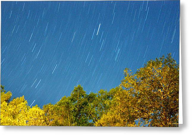 Star Trails On A Blue Sky Greeting Card