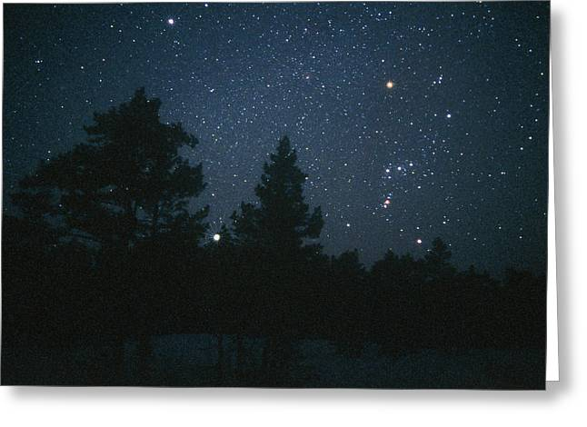 Starfield Including Orion, Sirius & Betelgeuse Greeting Card by Pekka Parviainen