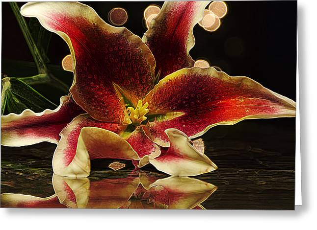 Stargazed Reflections Greeting Card