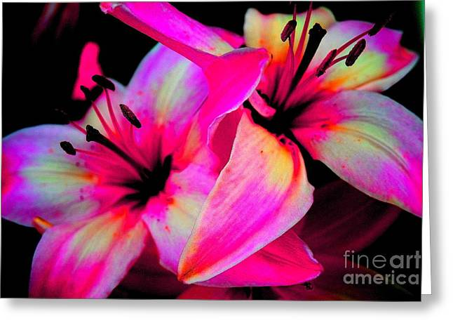 Stargazer Abstract Greeting Card