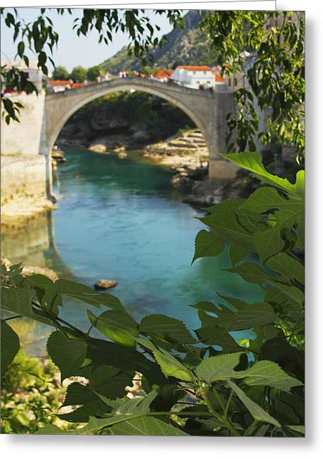 Stari Most Or Old Town Bridge Over The Greeting Card by Trish Punch