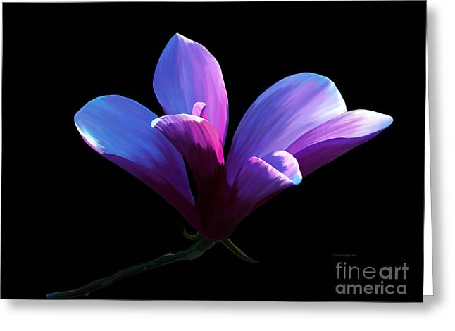 Steel Magnolia Greeting Card by Patricia Griffin Brett