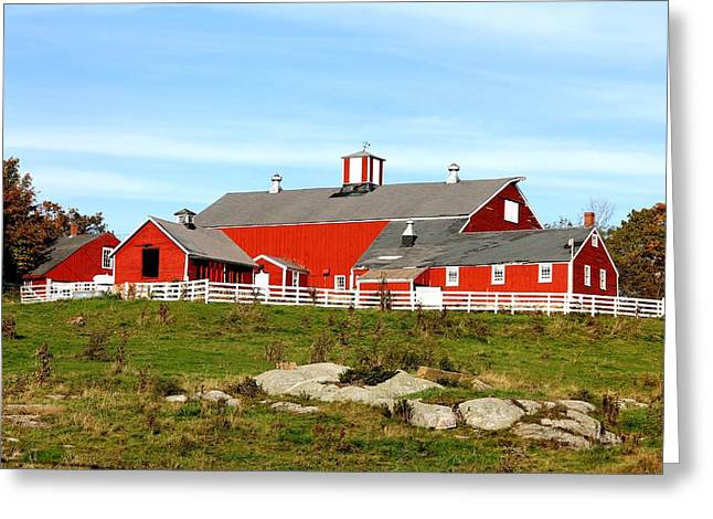 Steele Hill Farm Greeting Card