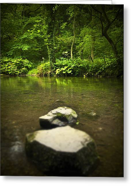 Stepping Stones Greeting Card by Svetlana Sewell