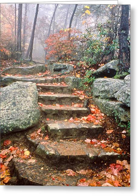 Steps Cloudland Canyon Greeting Card