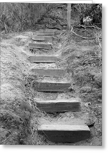 Steps  Greeting Card by Elizabeth  Doran