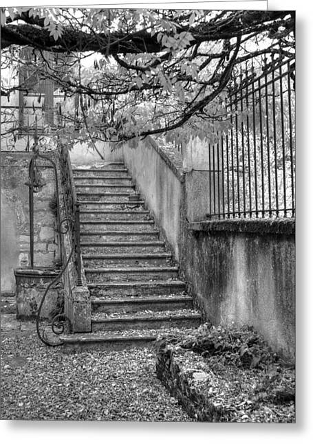 Steps Greeting Card by Jan Carr