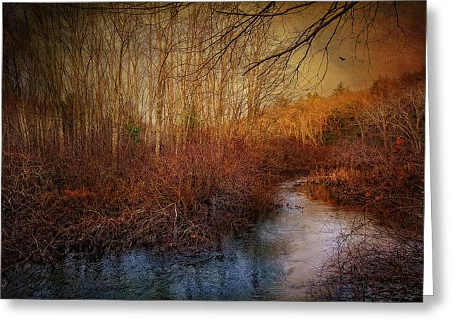 Still By The Stream Greeting Card by Robin-Lee Vieira