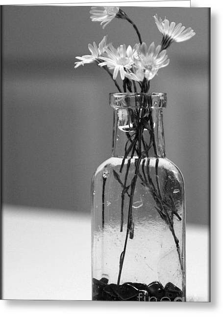 still life with flowers in black and white photograph by